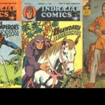5 Unknown Facts of Indian Comics  – Ankit2World